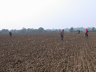 four people detecting in a ploughed field