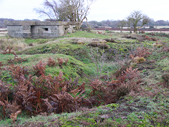 a WWII pillbox and earthworks at North Warren